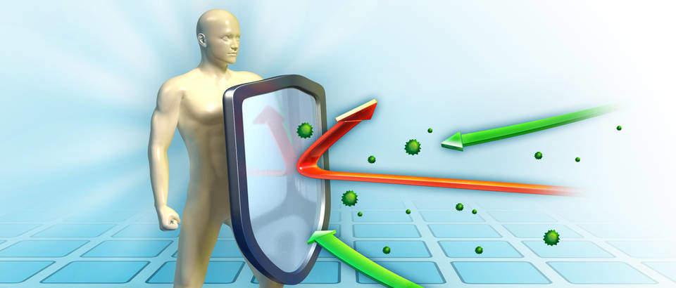 sistema imunológico, sistema de defesa, nossa proteção