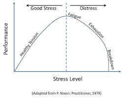 good-and-bad-stress Estresse: Estimulantes ou Adaptógenos?