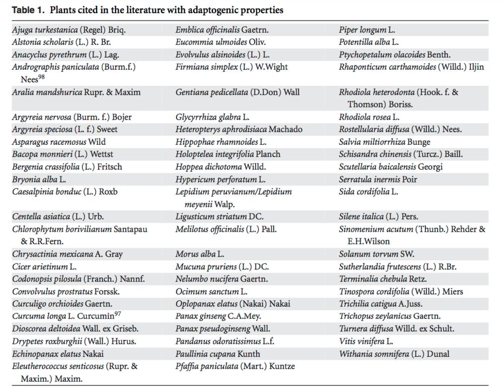 lista-de-adaptógenos Estresse: Estimulantes ou Adaptógenos?